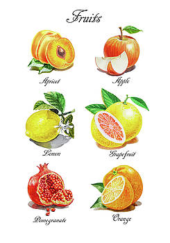 Watercolor Fruit Illustration Collection I by Irina Sztukowski