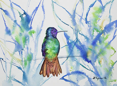 Watercolor - Golden-tailed Sapphire by Cascade Colors