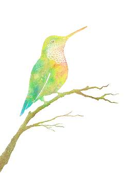 Watercolor Hummingbird by Konstantin Kolev