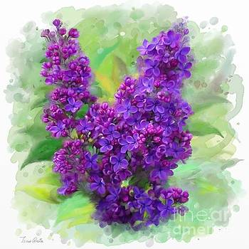 Watercolor Lilac by Ivana Westin