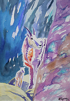 Watercolor - Mountain Goat with Young by Cascade Colors
