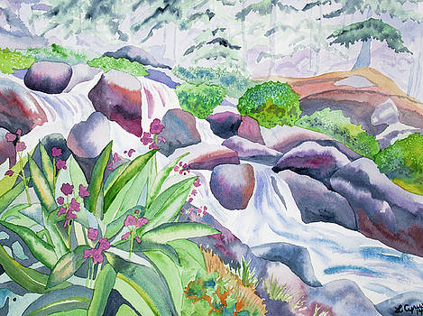 Watercolor - Parry's Primrose and Mountain Stream by Cascade Colors