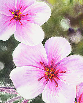 Watercolor Pink And Purple Flowers  by Irina Sztukowski