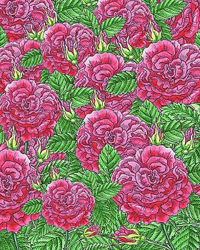 Watercolor Pink Rose Pattern by Irina Sztukowski