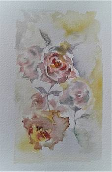 Watercolor Roses by Charlene CicALESE