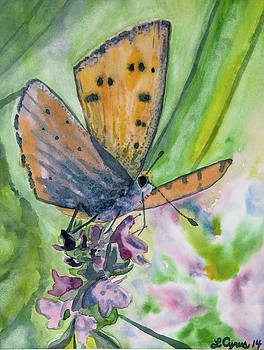 Watercolor - Small Butterfly on a Flower by Cascade Colors