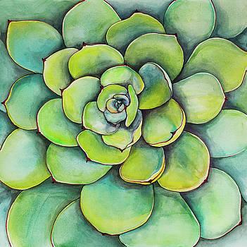 Watercolor Succulent Plant by Atelier B Art Studio