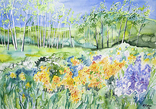 Watercolor - Sunflower, Lupine, and Aspen Landscape by Cascade Colors