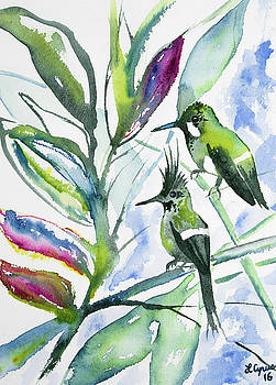 Watercolor - Two Together - Wire-crested Thorntail Pair by Cascade Colors