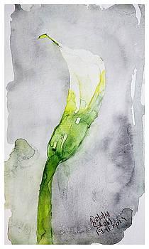 Watercolor White Cala by Natalia Stahl