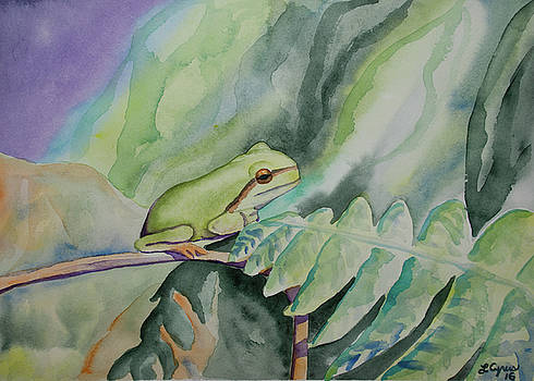 Watercolor - Young Tree Frog by Cascade Colors