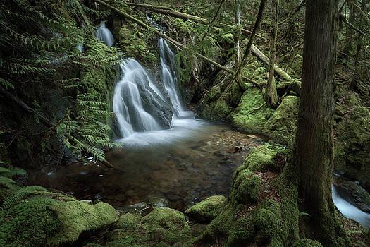 Waterfall by Adam Gibbs