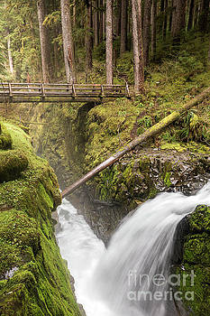 Waterfall Along the Sol Duc Falls Trail in Olympic National Park by Brandon Alms