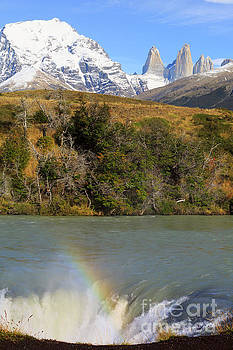 Waterfall and landscape of Cascada Paine Torres del Paine National Park by Louise Heusinkveld