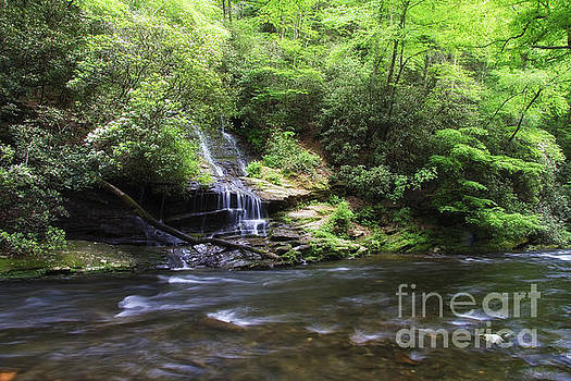 Jill Lang - Waterfall and Mountain Creek