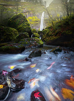Waterfall and stream with fluxing autumn leaves by William Lee