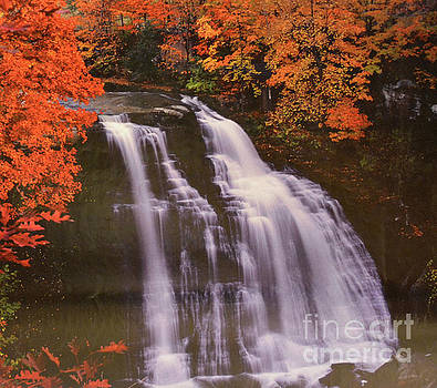 Waterfall At Autumn  by Ruth Housley