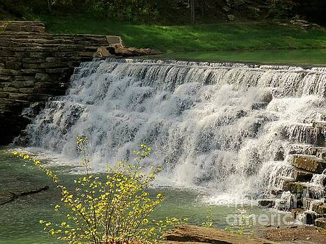 Waterfall at Devil's Den by Sandra McClure