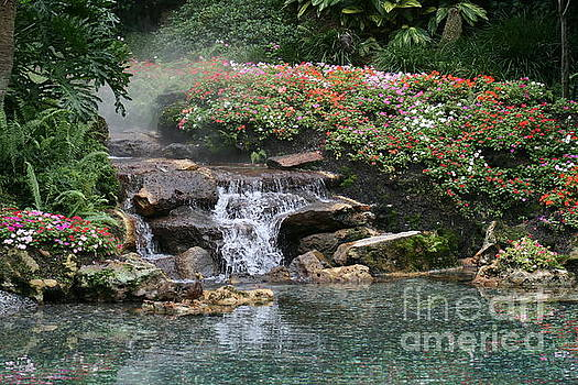 Waterfall at Disney by Lynn Jackson