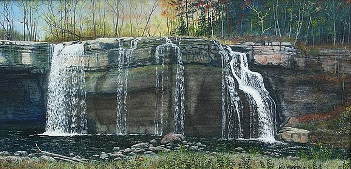 Waterfall at Ludlowville, NY by Michael Winston