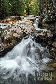 Waterfall at The Basin by Sharon Seaward