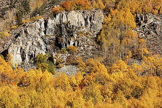 Waterfall, Bishop Creek Canyon by Stuart Gordon