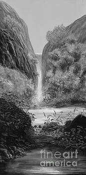 Waterfall by Chris Griffith
