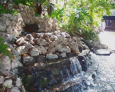 Waterfall by Deleas Kilgore