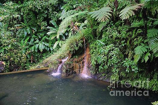 Gary Wonning - waterfall