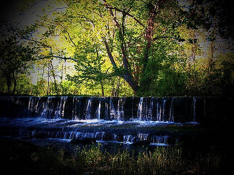 Waterfall in Aldie by Joyce Kimble Smith