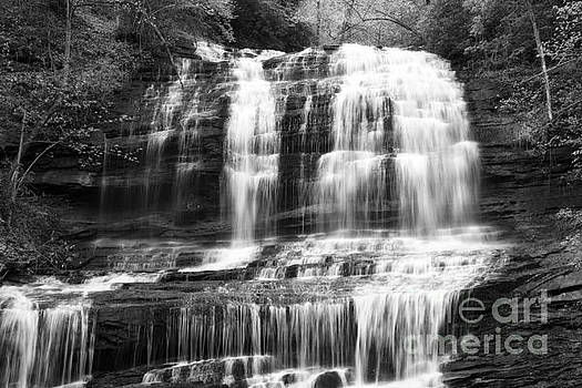 Jill Lang - Waterfall in Black and White