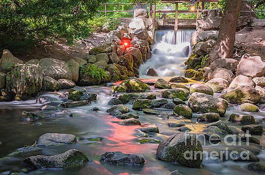 Mariusz Talarek - Waterfall in Gdansk Oliwa Park
