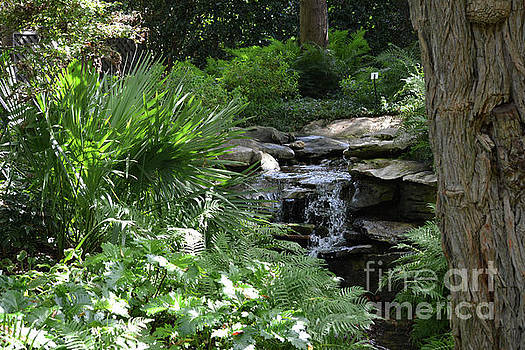 Waterfall In Wooded Area by Ruth Housley