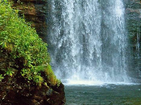 Waterfall by Joyce Kimble Smith