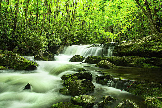Waterfall Little River Along Middle Prong Trail Smoky Mountains by Carol Mellema