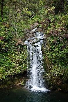 Waterfall, Maui, Hawaii by Preston Broadfoot