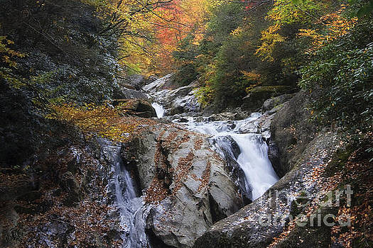 Jill Lang - Waterfall off Blue Ridge Parkway