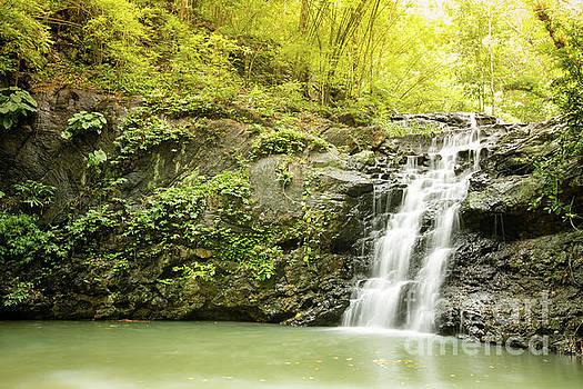 Waterfall by Pongsak Deethongngam