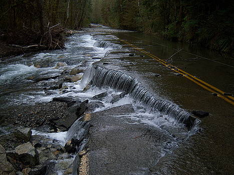 Waterfall Road Washington by Ken Day