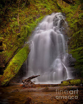 Waterfall Showers by DS Dodd