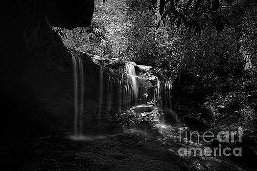 Dan Friend - Waterfalls on small mountain stream in West Virginia