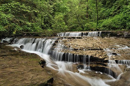 Waterfalls on Sweet Creek by Greg Vaughn
