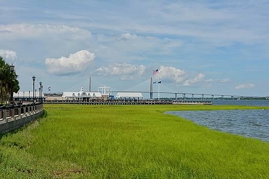 Greg Joens - Waterfront Park Charleston