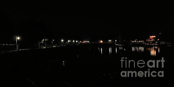 Felipe Adan Lerma - Waterfront Park October Night