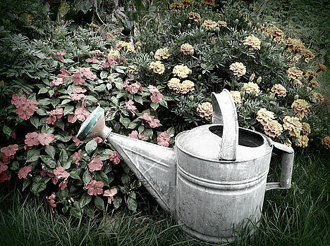 Emily Kelley - Watering Can 1
