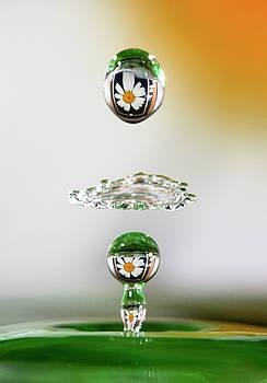 Watering the Flowers by Trish VanHousen