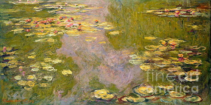 Monet - Waterlilies 46