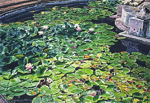 David Lloyd Glover - Waterlilies Huntington Fountain