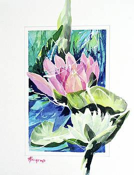 Waterlily Design by Rae Andrews