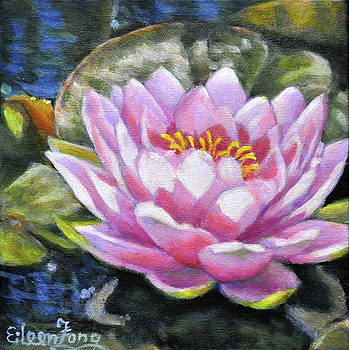 Waterlily in the Light 2 by Eileen  Fong